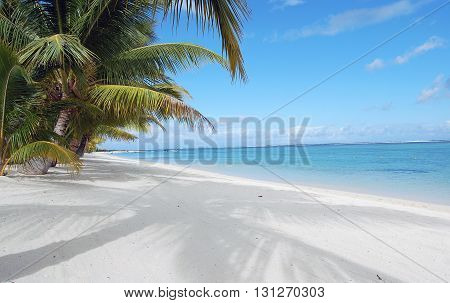 Paradise beach with white sand and palm tree shadow at the ocean