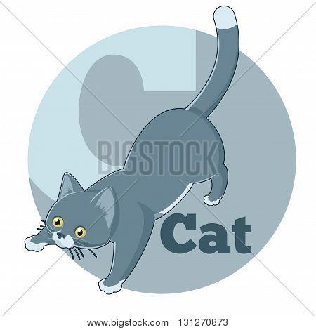 Vector image of the ABC Cartoon Cat3