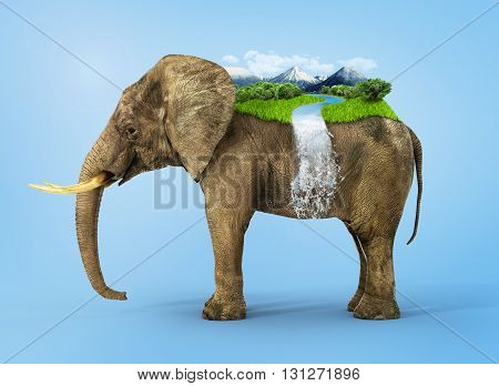 Concept of stability. Untouched nature on the african elephant's back.