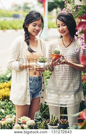 Smiling Asian women choosing cactuses in the store