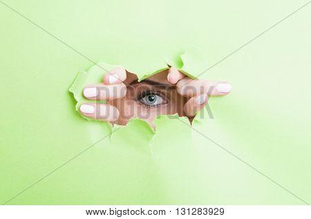 Woman Eye With Make-up Looking Thru Ripped Cardboard
