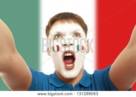 Italian fans at the stadium. Football, soccer fan