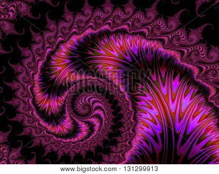 Pink spiral fractal with organic shapes resembling a nautilus shell