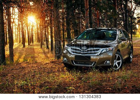 Saratov, Russia - September 29, 2014: Car Toyota Venza in the forest at sunset