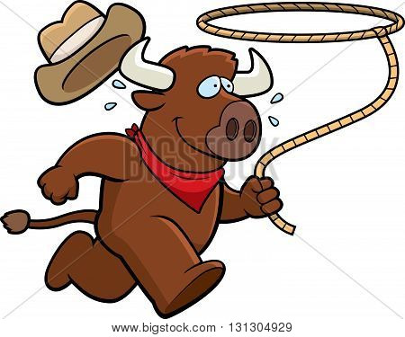 Buffalo Rodeo
