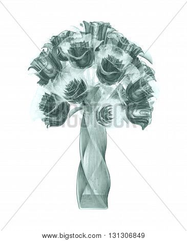 X-ray Image Of A Flower Isolated On White , The Rose