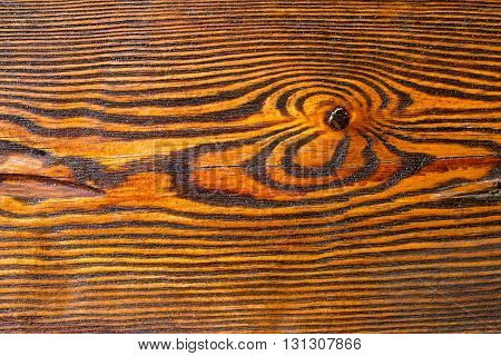 Smooth varnished wooden board. Natural pattern wood