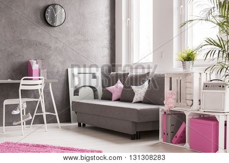 Living Room In Grey And Pink