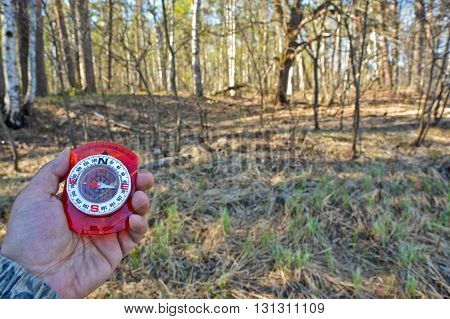 With compass on the walk. A hand holding a magnetic compass on nature background.