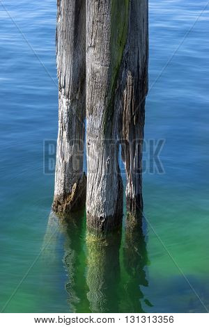 Old, weathered wooden post in the water of a lake
