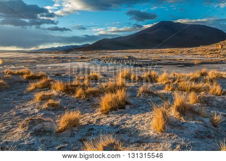 Landscape during sunrise in the mountains of Bolivia