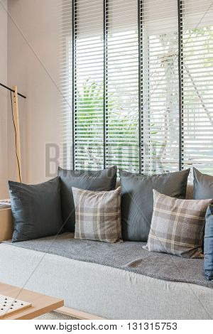 Modern Living Room With Set Of Pillows And Sofa