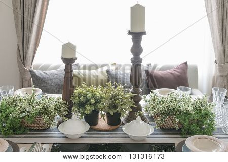 Set Of Green Plant On Dinning Table