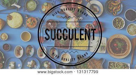 Tasty Yummy Succulent Food Meal Concept