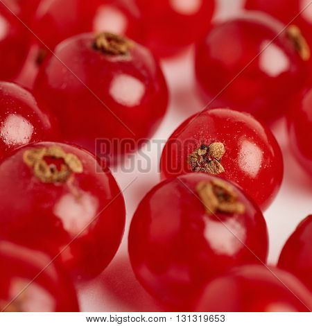 Red ripe  Currant berries over white surface background
