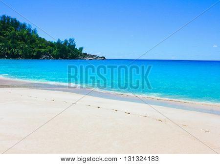 Landscape Summertime Dream