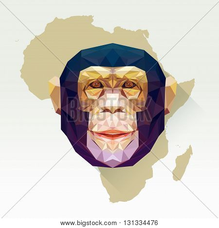 Vector image monkey in flat design with long shadow. Geometric chimpanzee illustration in polygonal style. Monkey low poly. Animal protection living in Africa or national park. African mammal.