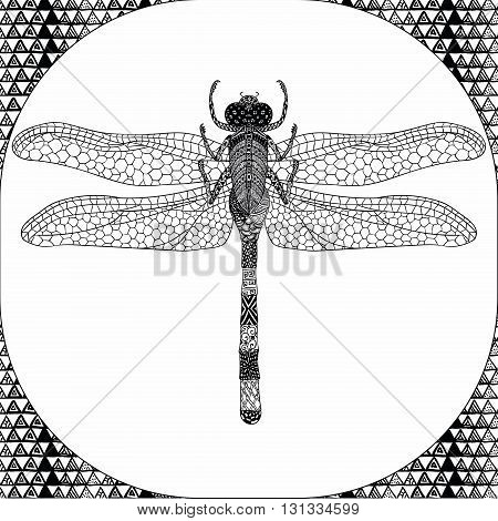 Coloring Page of Black Dragonfly with Hand Drawn Patterns, Zentangle Vector Illustartion, Decorative Tribal Totem Insect for Adult Coloring Books or Tattoos, Isolated on Background. Monochrome Sketch.