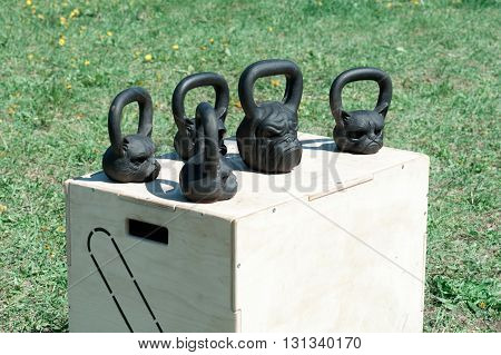 black, shiny iron weights in the form of a dog and cat heads, for weightlifting and fitness on a wooden box, in the open air on a background of green grass, sending. fitness concept