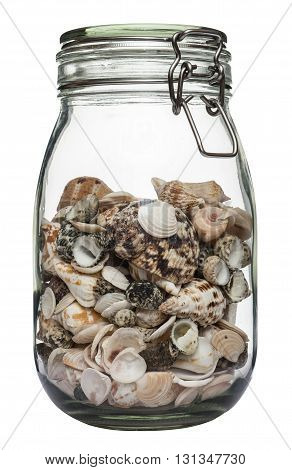 Strange herbarium in a jar. Glass jar for canning filled with seashells. Isolated on white background.