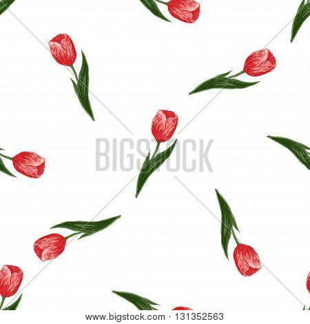 Seamless floral pattern with tulips on white background. Vector for wallpapers, textile, pattern fills, web page, surface textures. Holidays design of wedding, womens day, march 8, mothers day