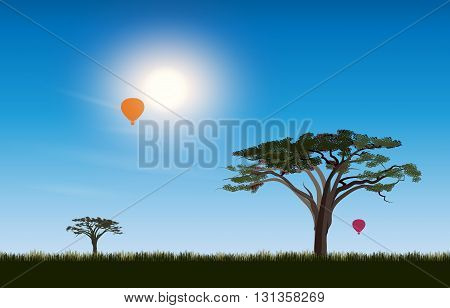 African desert Savannah. Scene landscape of a sunny day on the background of the acacia tree and air balloon in the sky. Sun rays and the beautiful nature.