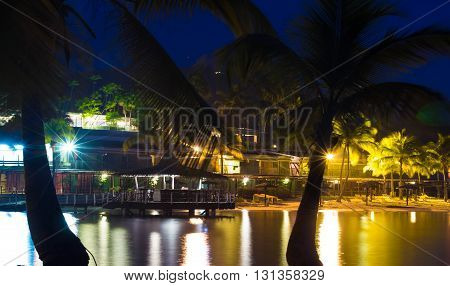 The palm trees on caribbean beach at night Martinique island French West Indies.