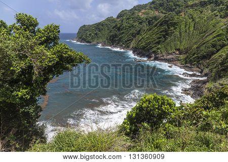 Scenic Landscape In Dominica