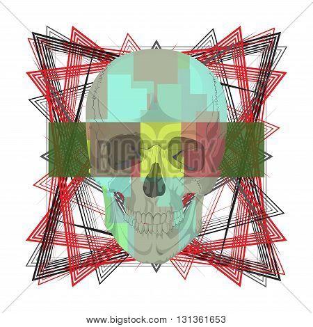 human skull bones skeleton dead anatomy illustration