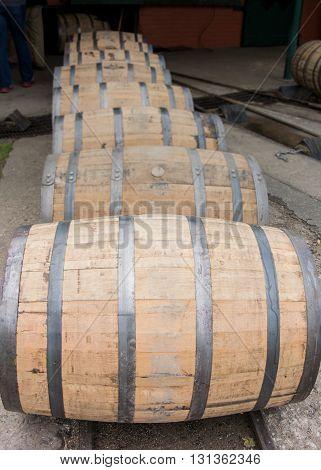 Row of Barrels Rolling n a single line Vertical