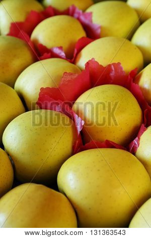 Vegetable background. Large yellow Golden Apples rows