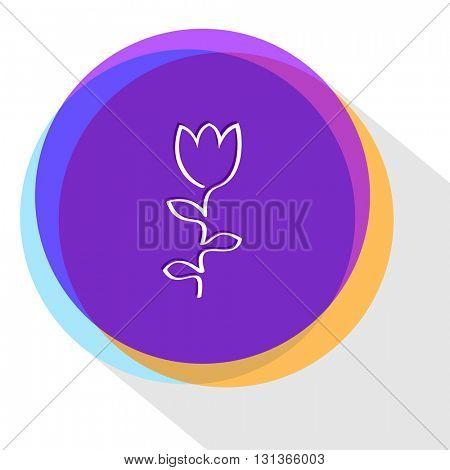 tulip. Internet template. Vector icon.