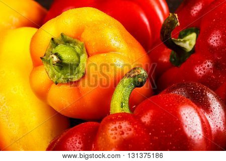 Different kinds of multicolor fresh organic peppers