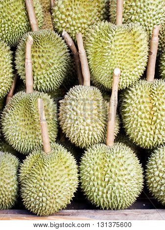 Group of fresh durian in the market.