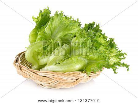 green frillies iceberg lettuce in rattan basket on white background
