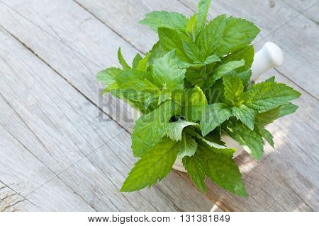 Fresh mint in mortar on garden table. Top view