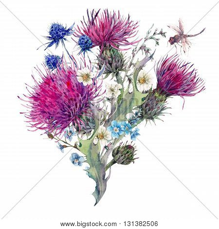 Summer natural meadow watercolor greeting card with wild flowers, thistles, dandelions, meadow herbs, chamomile and a dragonfly. Botanical Vintage isolated watercolor illustration