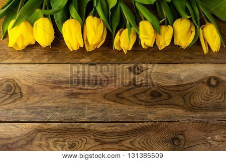 Yellow tulips row greeting card. Spring flowers. Flowers postcard. Flowers greeting . Birthday card. Birthday background. Tulips