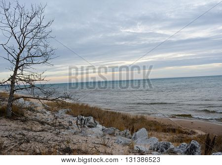 lake Michigan from Michigan's Upper peninsula with beach and tree in foreground