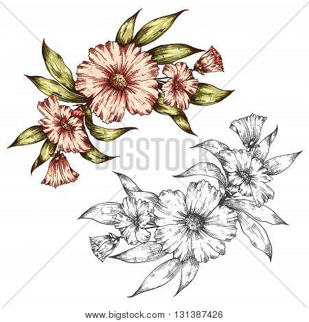 Hand drawn graphic floral bouquet vector illustration. Can be used for greeting card posters flyers brochures invitation wedding and save the date template design cards