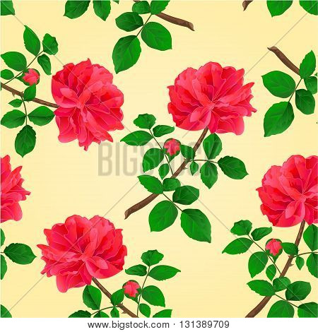 Seamless texture twig red rose with leaves and bud vector illustration