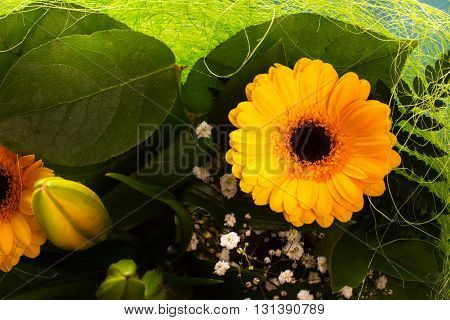 Yellow gerbera in a bunch. Selective focus
