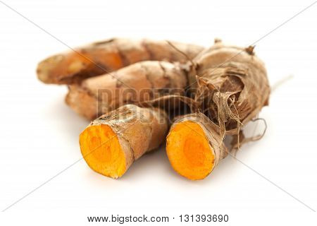 Collection of whole and sliced fresh Organic Long Turmeric or Haldi (Curcuma longa) isolated on white background.