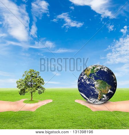 Green Earth concepthand holding tree and earth against green field and blue sky background.Elements of this image furnished by NASA