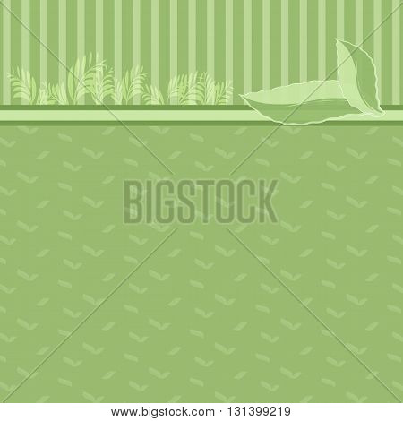 Green and leaf nature background Eco concept Greeting card template or background