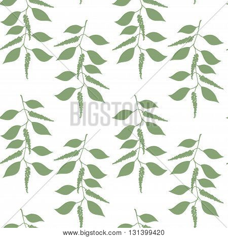 Seamless pattern berries and leaves of Black pepper. Floral background. Vector illustration.