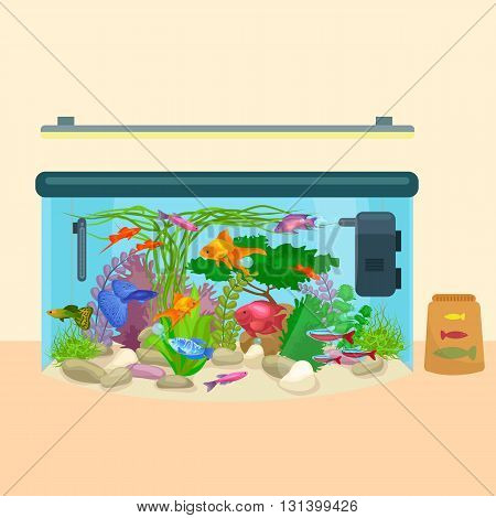 Fish tank, aquarium with water, sea tropical animals, algae and underwater plants, corals, equipment vector illustration