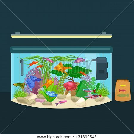 Aquarium fish, seaweed underwater, tank isolated on dark background vector illustration
