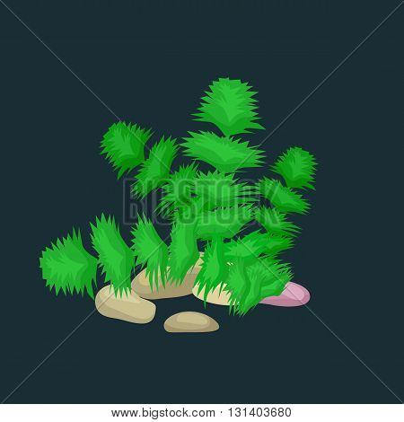 Seaweed, solated colorful corals and algae on a dark background. Vector underwater flora and fauna.