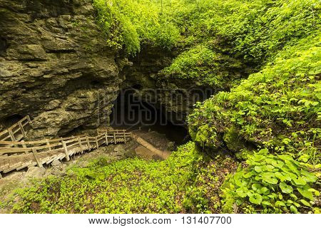 A set of stairs leading to a large cave during spring.